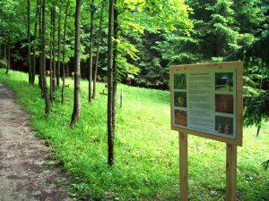 Belegstelle Unterwieserwald